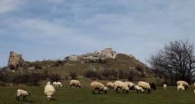 Novoberda Castle 2_thumb5