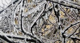 Glassy Ice in Gjakovajanuary 5 2008_thumb5