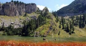 Liqeni i Kuqishtes, Peje1_thumb5