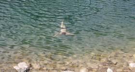 Liqeni i Kuqishtes, Peje_thumb5